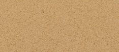 Cambrian Gold_3100x2140_17